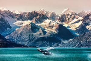 Alaska Doubles THC Limit For Cannabis Edibles