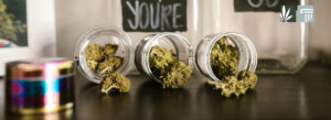 GOP Bill Would Block Low-Income People on Federal Assistance from Purchasing Marijuana