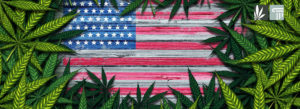 Has US Marijuana Legalization Now Reached the Point of Critical Mass?