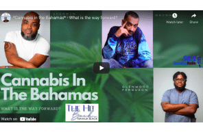 *Cannabis in the Bahamas* – What is the way forward?