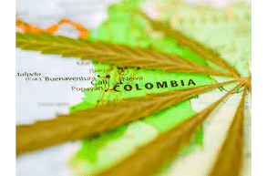 Colombia: New Cannabis Regulations On The Horizon In October Says Media Report