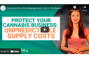 Green Growth CPA's : Cannabis Price Risk Management – Part 1: The Basics