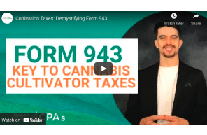 Green Growth: Cultivation Taxes: Demystifying Form 943