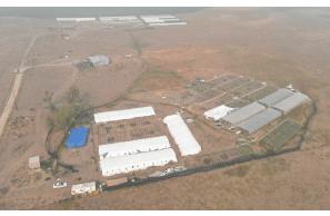 Oregon: Law Enforcement Raids 2 Large Hemp Grows Near Beatty – 22k Plants Destroyed