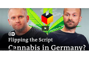Should Germany legalize cannabis? | Flipping the Script