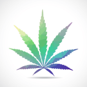 Cannabis Market Activity and New Product Developments in 2021