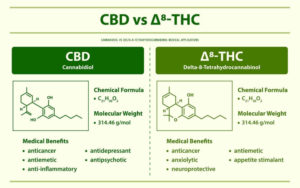 Delta-8 in Michigan? New THC Now Regulated by MRA