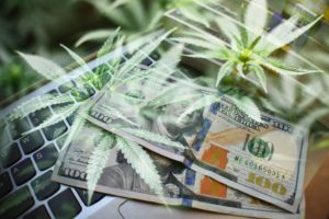 Florida to Resume Online Purchasing of Cannabis Products